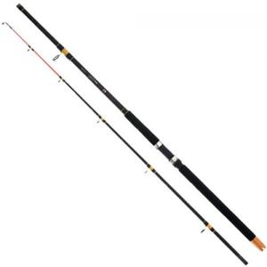 Wędka Mikado Cat fish 2,70m do 300g